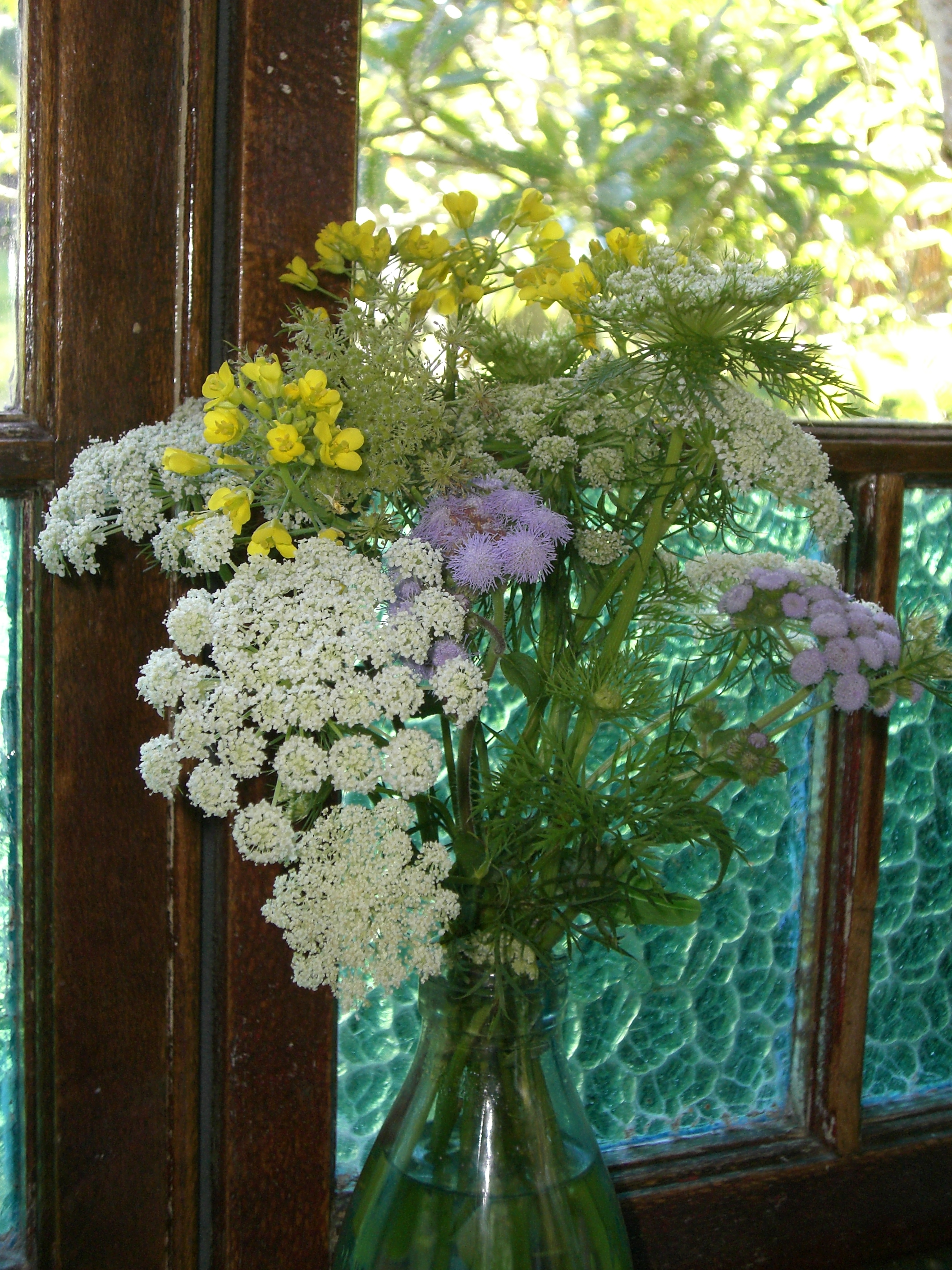 Weeds and flowering herbs and vegetables from my messy summer garden.