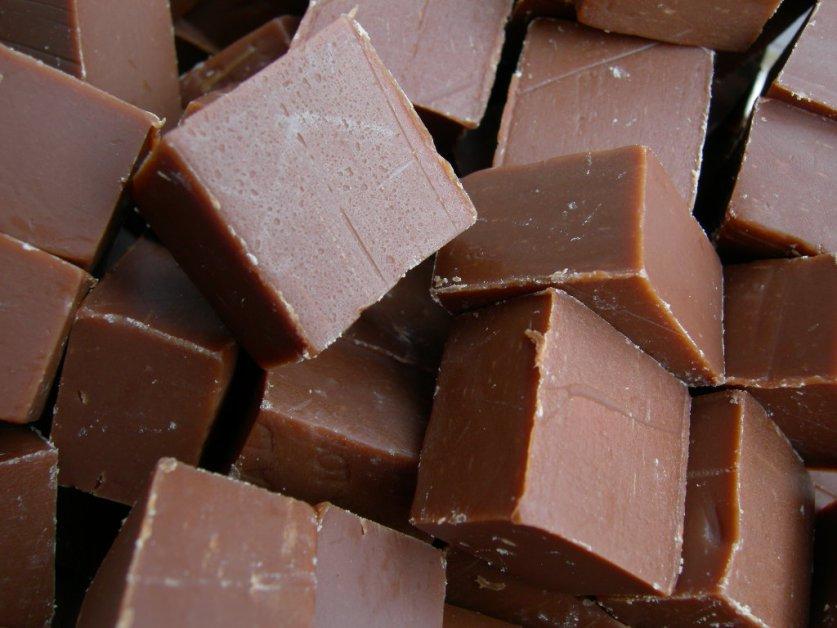 fudge (1)