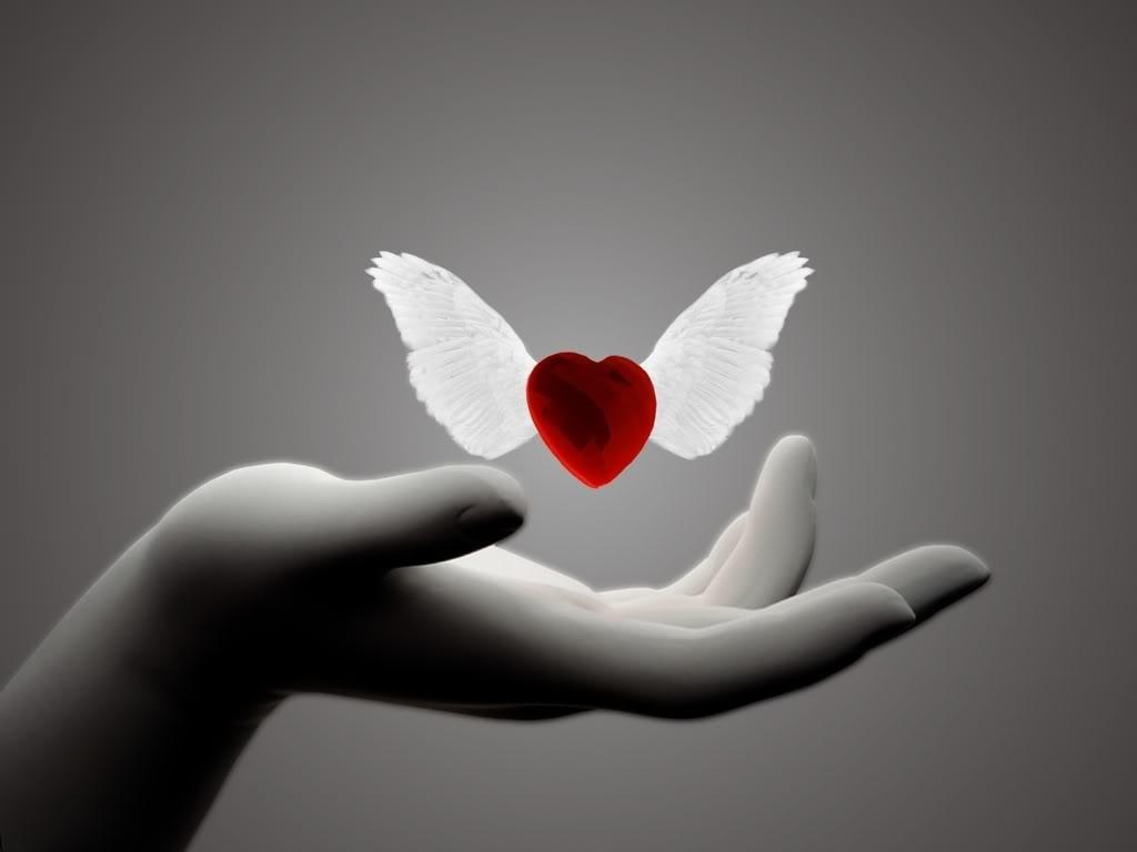 Image from Spiritual-Activism.com