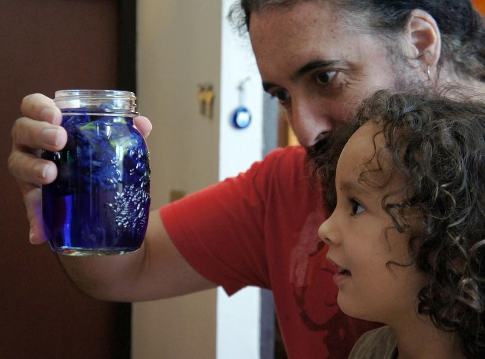 Paul and his son, with a butterfly pea tincture-in-progress