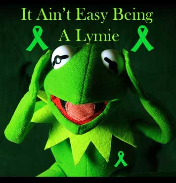 Image from www.crazylyme.com