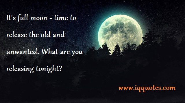 Image from www.iqquotes.com