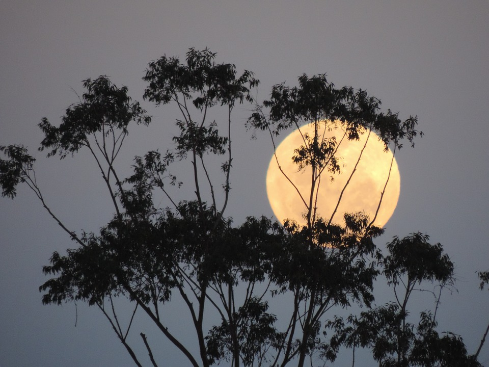 March 2019 Supermoon – Because Good Things Come In Threes