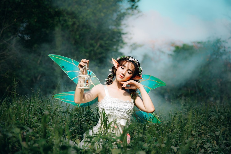 Have You Ever Met A Fairy?