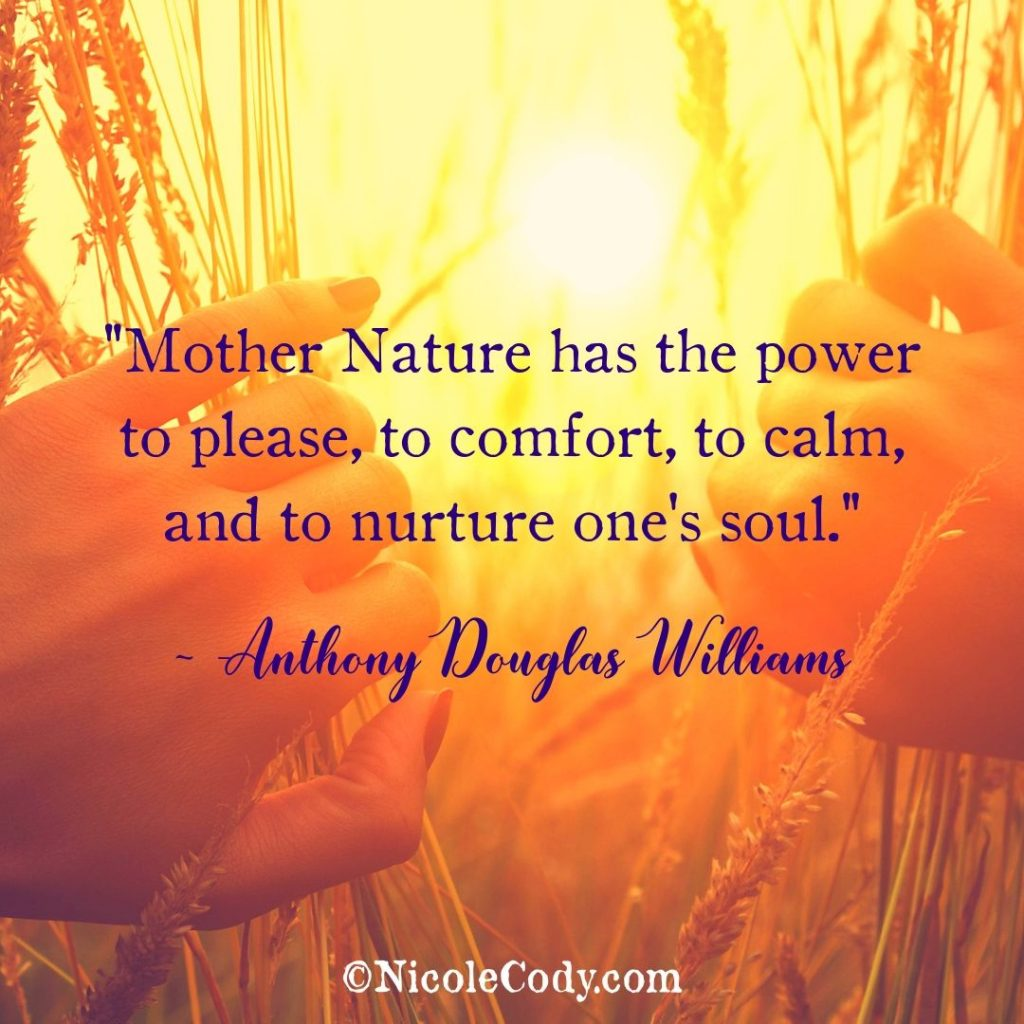 20 Ways To Strengthen Your Connection To Mother Earth
