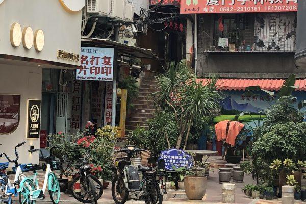 A Dumpling Tour of Shanghai
