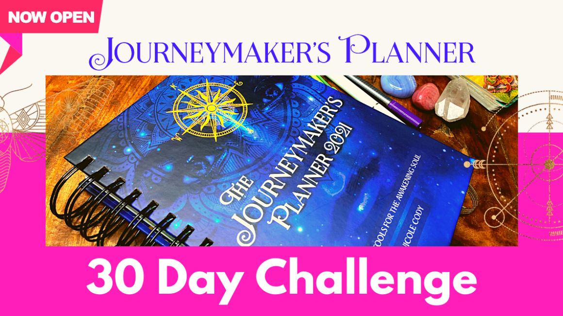 My Free 30 Day Planner Challenge Starts Today!